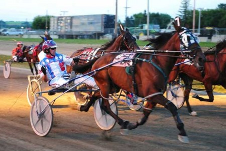 harness-racing1.jpg